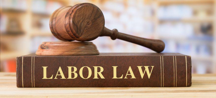 tesi in diritto del lavoro